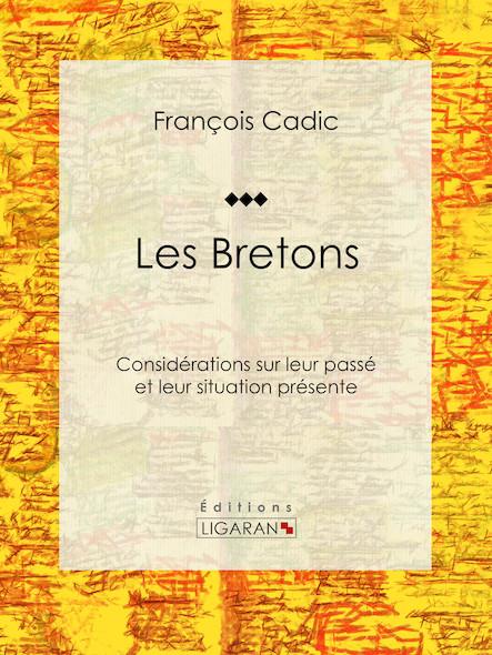 Les Bretons, Considérations sur leur passé et leur situation présente