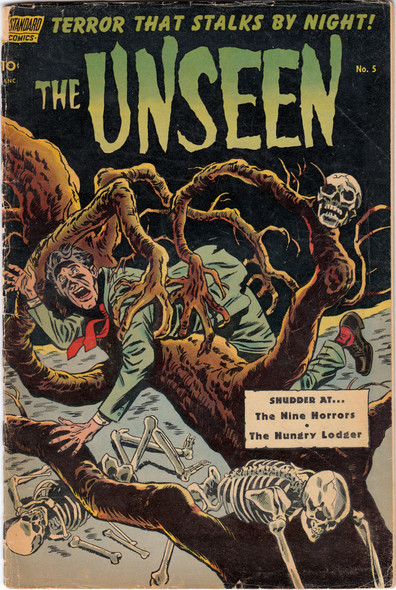 The Unseen N°5