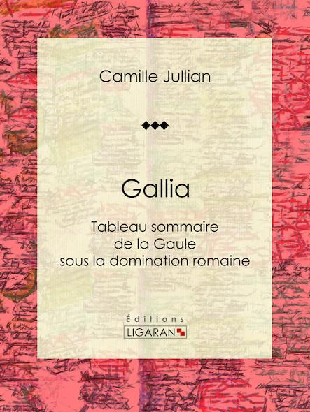 Gallia, Tableau sommaire de la Gaule sous la domination romaine