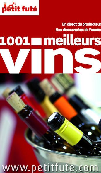1001 Meilleurs vins 2013 Petit Futé