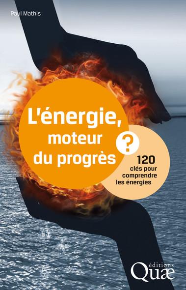 L'énergie, moteur du progrès ? : 120 clés pour comprendre les énergies