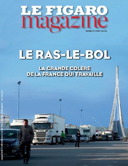 Le Figaro Magazine - Juin 2016 : Le Ras le bol : la grande colère de la France qui travaille