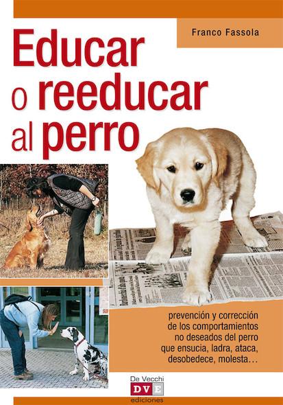 Educar o reeducar al perro