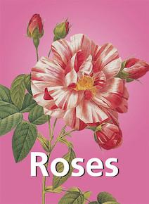 Roses - Français | Charles, Victoria