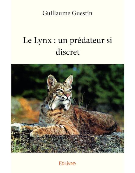 Le Lynx : un prédateur si discret