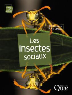 Les insectes sociaux | Bruno Corbara