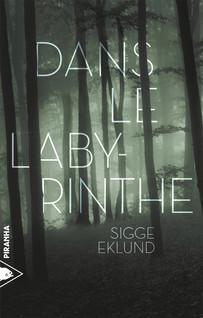 Dans le labyrinthe | Eklund, Sigge