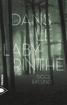Dans le labyrinthe | Sigge Eklund