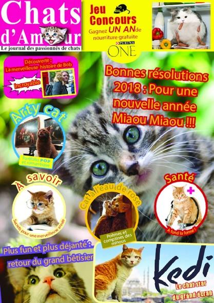 Chats d'Amour - Février 2018