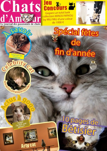 Chats D'amour N°52