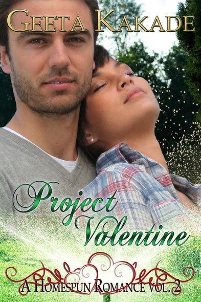 Project Valentine : A Homespun Romance