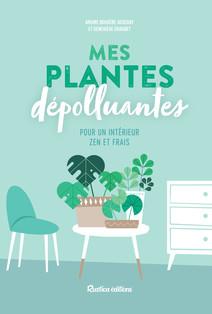 Mes plantes dépolluantes pour un intérieur zen et frais | Chaudet, Geneviève