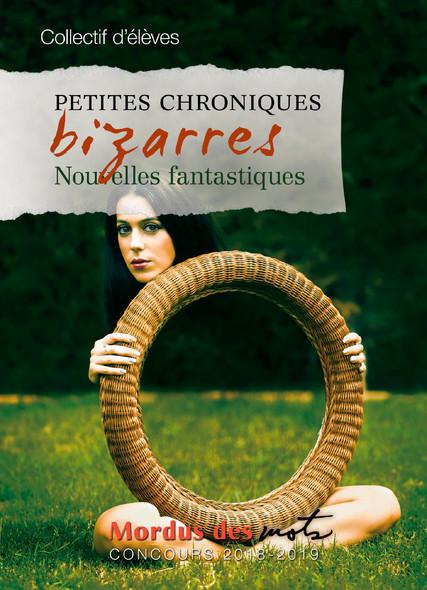 Petites chroniques bizarres : Nouvelles fantastiques