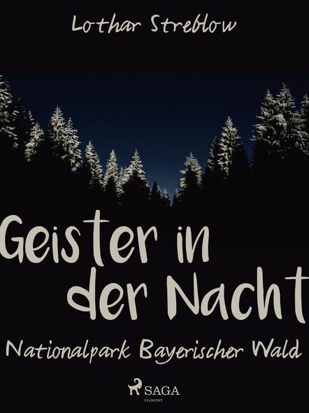 Geister in der Nacht. Nationalpark Bayerischer Wald