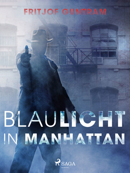 Blaulicht in Manhattan