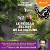 Le Réseau secret de la nature : De l'influence des arbres sur les nuages et du ver de terre sur le sanglier