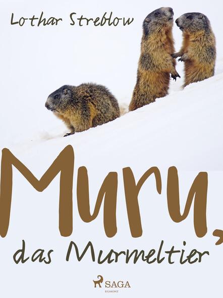 Murru, das Murmeltier