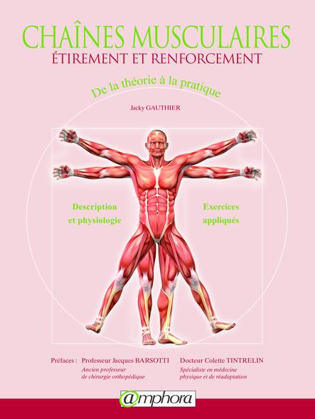 Chaînes musculaires : Étirement et renforcement