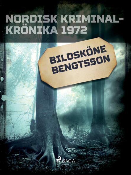 Bildsköne Bengtsson