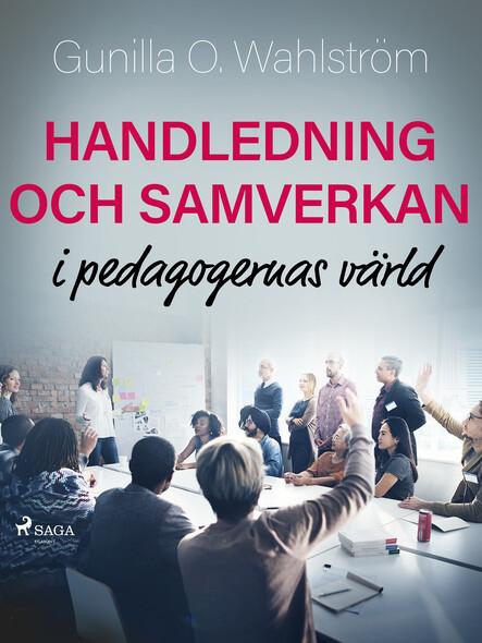 Handledning och samverkan i pedagogernas värld