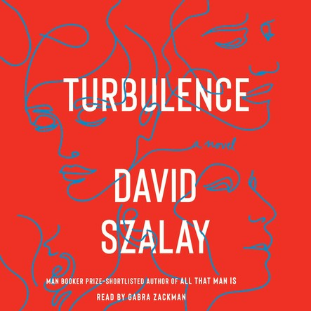 Turbulence : A Novel