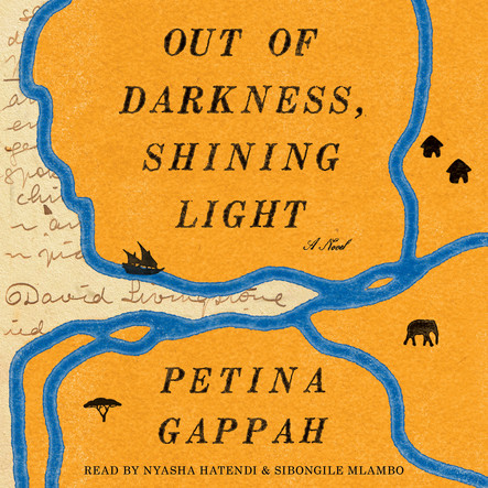 Out of Darkness, Shining Light : A Novel