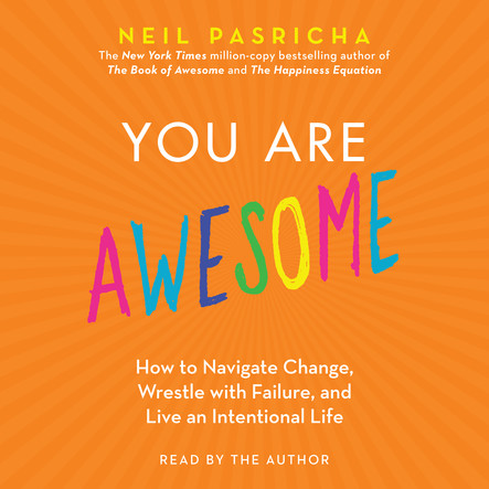 You Are Awesome : How to Navigate Change, Wrestle with Failure, and Live an Intentional Life