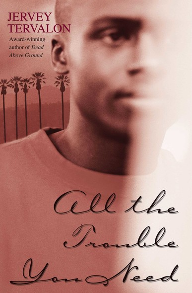 All the Trouble You Need : A Novel