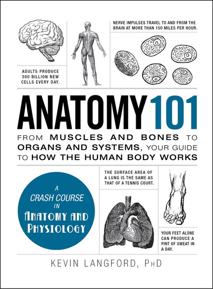 Anatomy 101 : From Muscles and Bones to Organs and Systems, Your Guide to How the Human Body Works