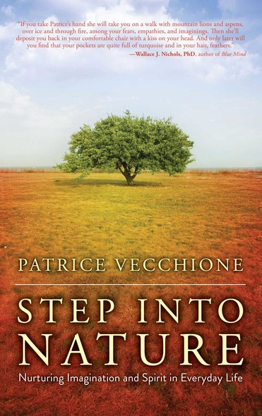 Step into Nature : Nurturing Imagination and Spirit in Everyday Life