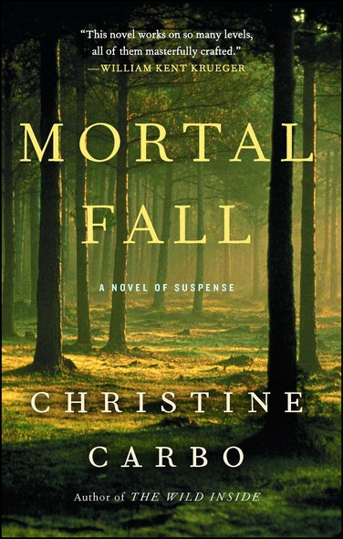 Mortal Fall : A Novel of Suspense