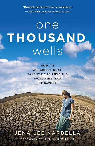 One Thousand Wells : How an Audacious Goal Taught Me to Love the World Instead of Save It