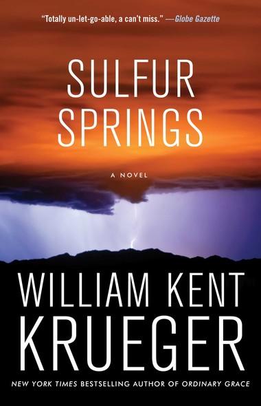 Sulfur Springs : A Novel