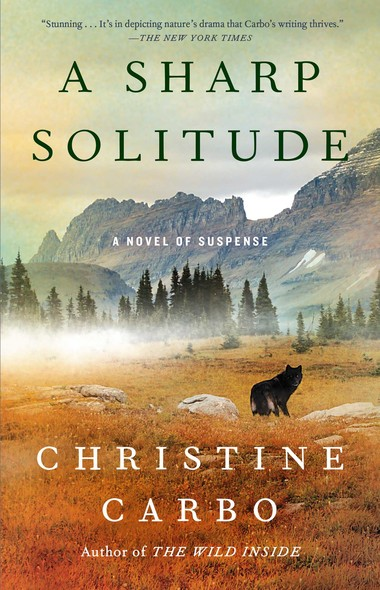 A Sharp Solitude : A Novel of Suspense