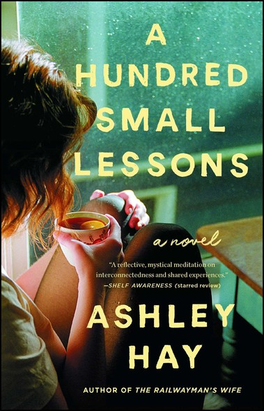 A Hundred Small Lessons : A Novel