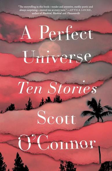A Perfect Universe : Ten Stories