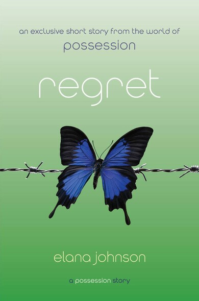 Regret : A Possession Story