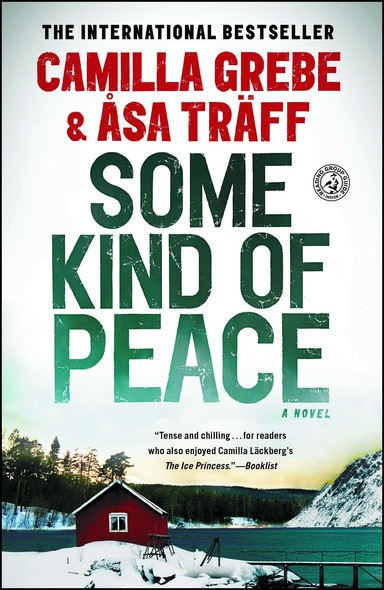 Some Kind of Peace : A Novel