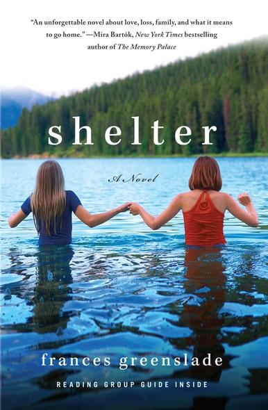 Shelter : A Novel