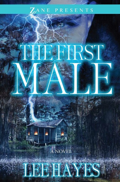 The First Male : A Novel