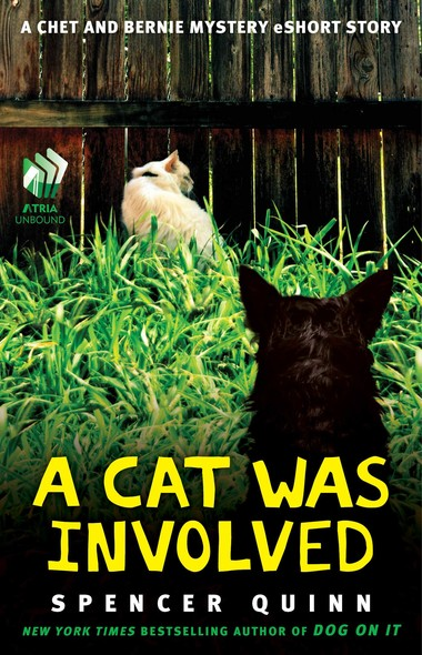 A Cat Was Involved : A Chet and Bernie Mystery eShort Story