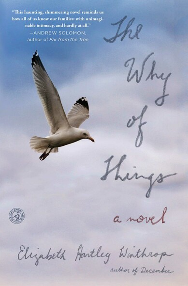 The Why of Things : A Novel