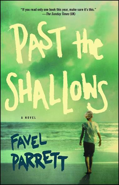 Past the Shallows : A Novel
