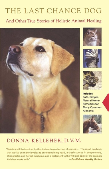 The Last Chance Dog : and Other True Stories of Holistic Animal Healing