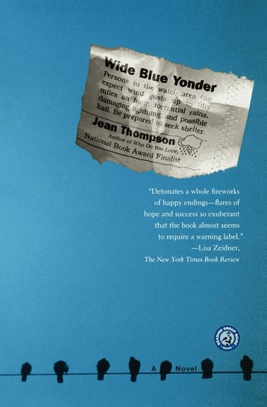 Wide Blue Yonder : A Novel