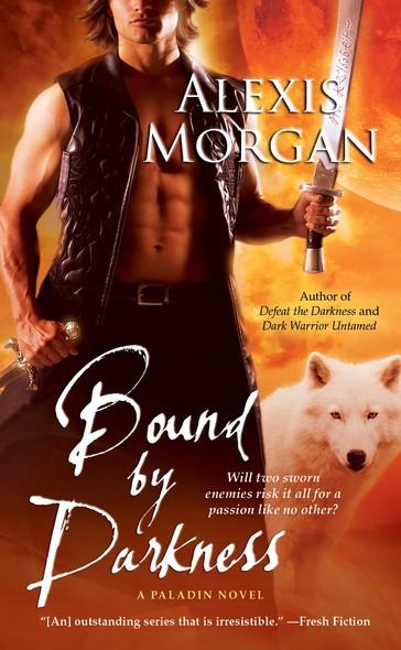 Bound by Darkness : A Paladin Novel