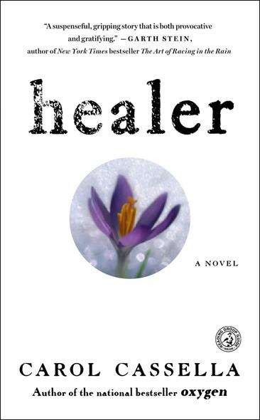 Healer : A Novel