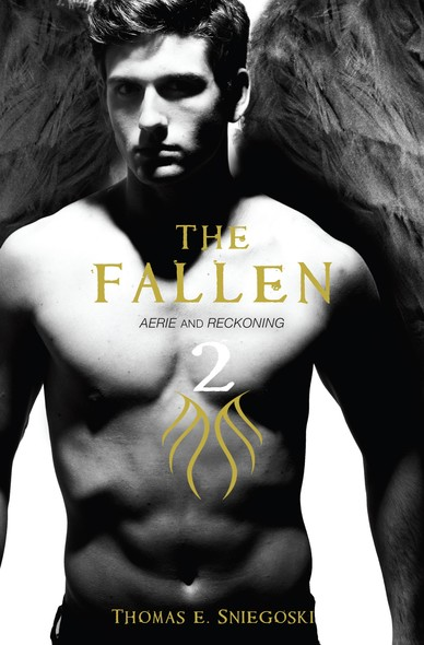 The Fallen 2 : Aerie and Reckoning
