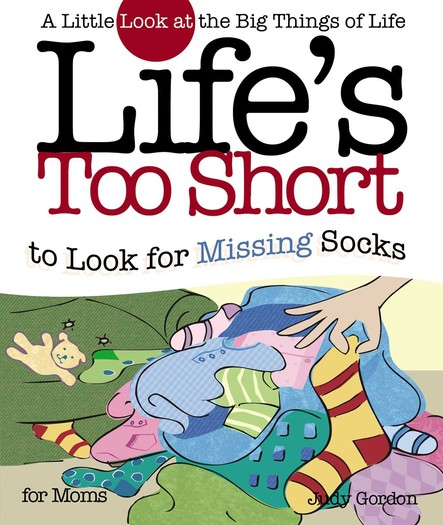 Life's too Short to Look for Missing Socks : A Little Look at the Big Things in Life