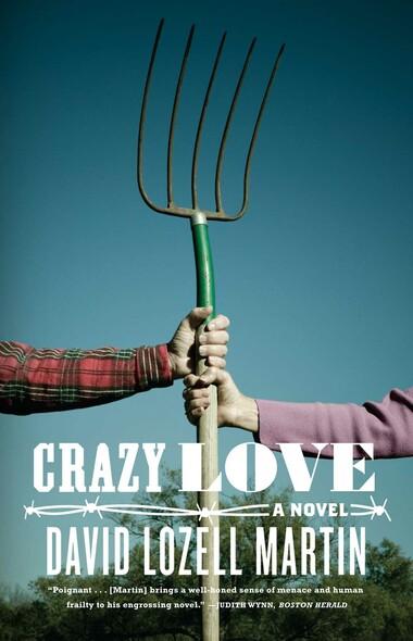 Crazy Love : A Novel